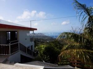 G--te-de-France-N--291-4-pers-2---pis-Saint-Luce-Martinique-6.jpg