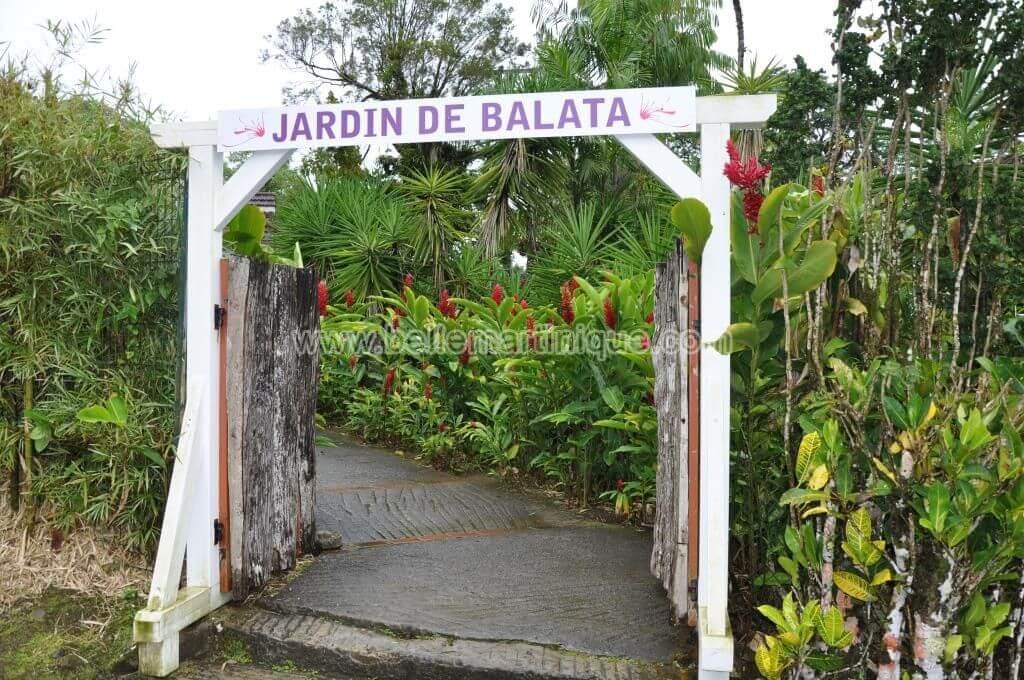 Le jardin de balata belle martinique - Maison jardin restaurant altamonte springs fort de france ...